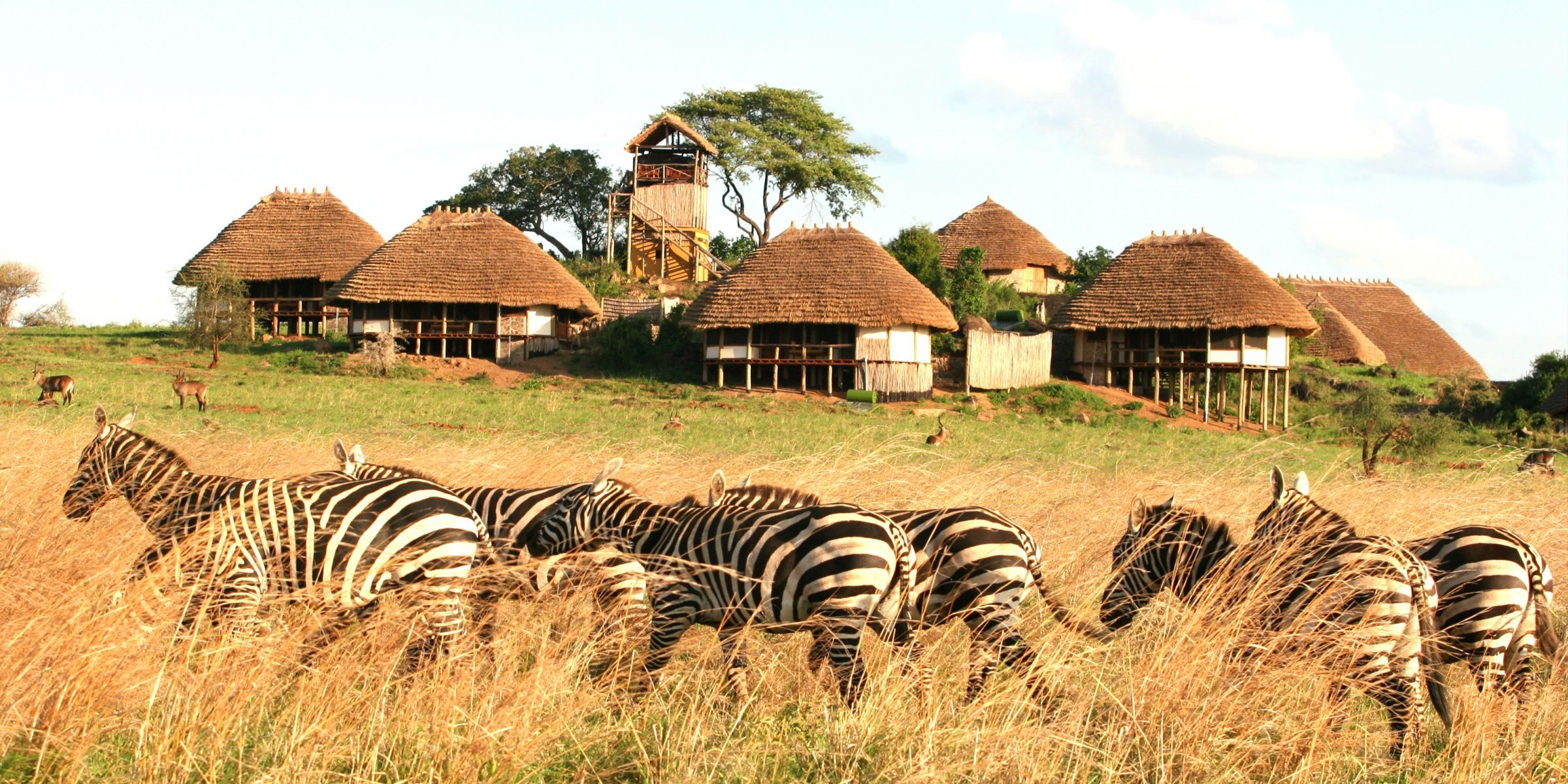 Luxury lodges in Kidepo Valley National park