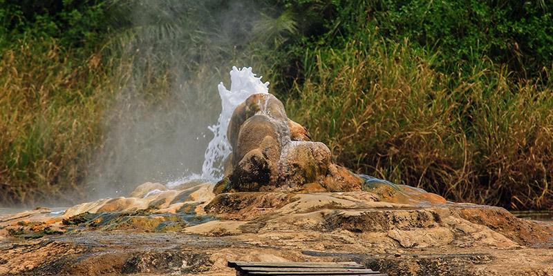 Semuliki national park Uganda, Birding in Semuliki national park, Birding safari in Uganda